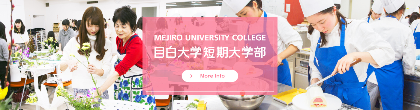 Mejiro University College